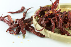 Dried chillies Royalty Free Stock Photo