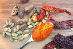 Dried Chillies and Cardamoms Royalty Free Stock Photo