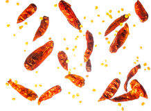 Dried chillies and chillie seeds Stock Photos