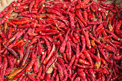 Dried Chillies Stock Images