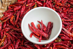 Dried Chillies Royalty Free Stock Image