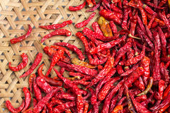 Dried Chillies Royalty Free Stock Images