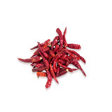 Dried Chillies. On isolated background Stock Image