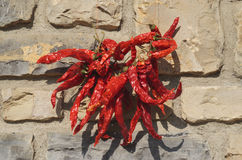 Dried chillies. Dried red chiles on stone wall background Royalty Free Stock Photo