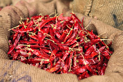 Dried chillies in a sack Stock Photo