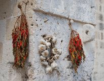 Dried Chillis and Garlic royalty free stock photography