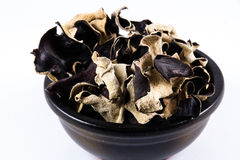 Dried Chinese Black Mushrooms, Auricularia polytricha, also call Royalty Free Stock Images