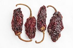 Dried Chipotle Morita Chili Peppers. Chipotle Morita chili peppers on a white background royalty free stock images