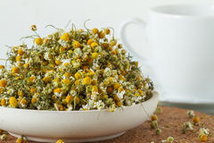 Dried chomomile flowers Royalty Free Stock Photos