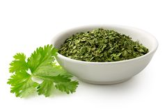 Dried chopped coriander leaves in white ceramic bowl next to fresh coriander leaves isolated on white. Dried chopped coriander leaves in round white ceramic bowl royalty free stock photo