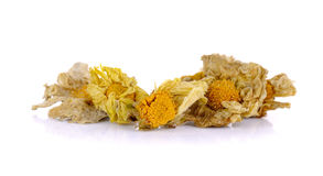 Dried chrysanthemum flowers isolated on white background Stock Image