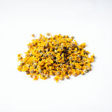 Dried chrysanthemum flowers for making tea Royalty Free Stock Image