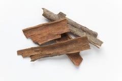 Dried Cinnamon bark Royalty Free Stock Image