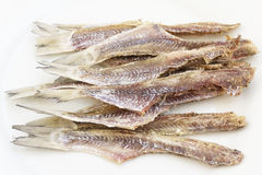 Dried cleaned fish Stock Images