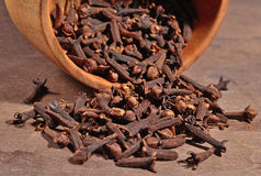 Dried clove in a bowl Royalty Free Stock Photos