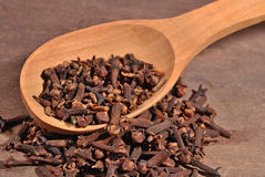 Dried clove in a spoon. Dried clove in a wooden spoon Stock Image