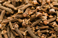 Dried cloves Stock Images