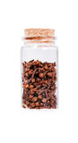 Dried cloves in a glass bottle with cork stopper, isolated on wh. Ite Stock Photos