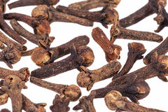 Dried cloves isolated on white background, close up Royalty Free Stock Images