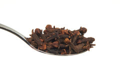 Dried Cloves on a teaspoon Stock Images