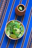 Dried Coca Leaves and Coca Tea Stock Photo
