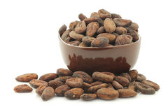 Dried cocoa beans in a brown bowl Royalty Free Stock Photos