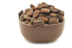 Dried cocoa beans in a brown bowl Stock Photo