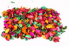 Dried colored flowers. Dried flowers on a lot of colors on white background top view Stock Photography