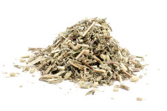 Dried common yarrow stock images