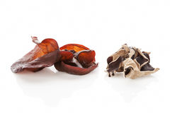 Jew's ear. Stock Images