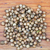 Dried coriander fruit seeds Royalty Free Stock Image
