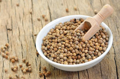 Dried Coriander Seeds Stock Photography