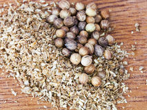 Dried coriander seeds stock image