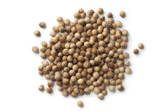 Dried coriander seeds Royalty Free Stock Photo