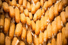 Dried corn Royalty Free Stock Photos