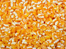 Dried Corn grains Stock Photo
