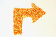The dried corn kernels are placed in an  arrow. Stock Photos