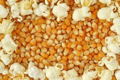 Dried corn kernels and popped popcorn frame Stock Image