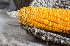 Dried Corn Stalk in basket on wood table Royalty Free Stock Photo