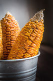 Dried Corn Stalk in bucket Royalty Free Stock Photography