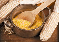 Dried corns Stock Photography