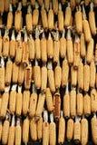 Dried corns in Croatia Royalty Free Stock Image