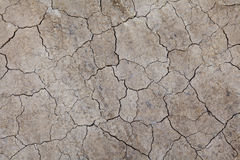 Dried crack land Royalty Free Stock Image
