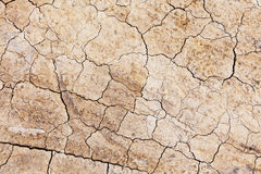 Dried crack land Royalty Free Stock Photos