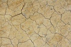 Dried crack land Stock Image