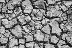 Dried and crack soil Royalty Free Stock Images