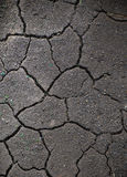 Dried crack soil ground texture Royalty Free Stock Photo
