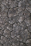 Dried crack soil ground texture Stock Photography