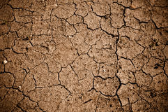 Dried Cracked Dirt  or Mud Royalty Free Stock Images
