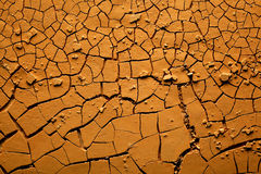 Dried Cracked Earth Royalty Free Stock Image